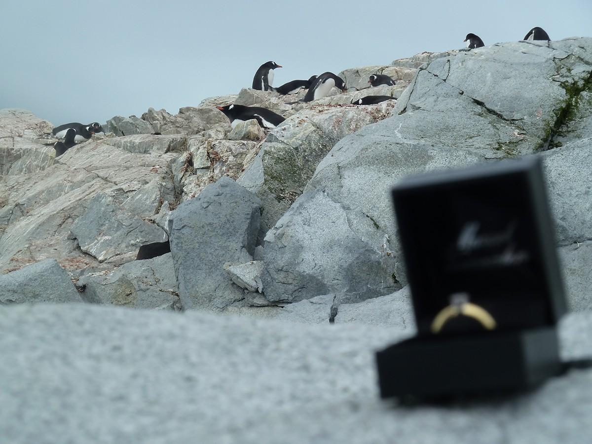 verlovingsring_Richard_antarctica2